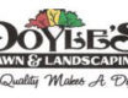 Doyle's Lawn & Landscaping Website