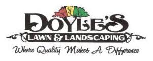 Website design in Frankfort, Lexington and Kentucky